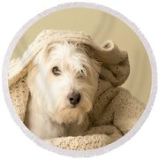 How About A Snuggle Card Round Beach Towel