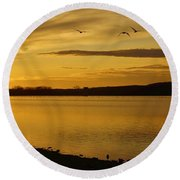 How Many Birds Can You Count? Round Beach Towel