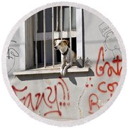 How Much Is That Doggie In The Window? Round Beach Towel by Kurt Van Wagner