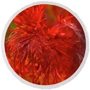 Hubble Galaxy With Red Maple Foliage Round Beach Towel