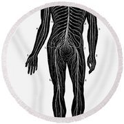 Human Nervous System Round Beach Towel