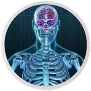 Human Skeleton And Brain, Artwork Round Beach Towel
