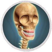 Human Skeleton Showing Teeth And Gums Round Beach Towel by Stocktrek Images