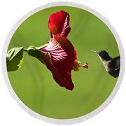 Hummer At The Hibiscus Round Beach Towel