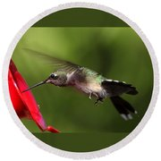Look Hummingbird Eyelashes Round Beach Towel
