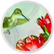 Humming Bird And Cactus Flowers Round Beach Towel