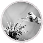 Hummingbird Black And White Round Beach Towel