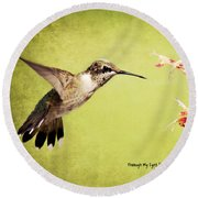 Humming Bird In Flight Round Beach Towel