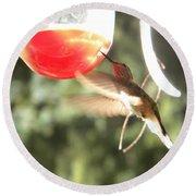Hummingbird 1 Round Beach Towel