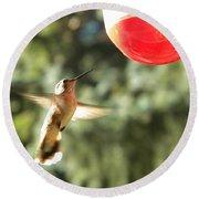 Hummingbird 2 Round Beach Towel