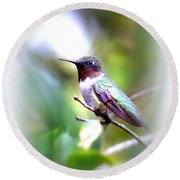 Hummingbird - Beautiful Round Beach Towel