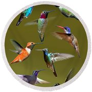 Hummingbird Collage Round Beach Towel