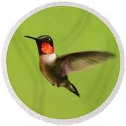 Hummingbird Defender Round Beach Towel