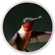 Hummingbird - Hitching A Ride - Ruby-throated Hummingbird Round Beach Towel
