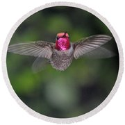 Hummingbird Male Anna's Flapping His Wings Round Beach Towel