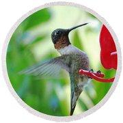 Hummingbird Male Ruby Throated  Round Beach Towel