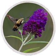 Hummingbird Moth Iv Round Beach Towel