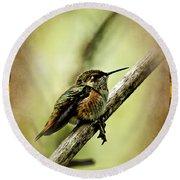 Hummingbird Noveau Round Beach Towel