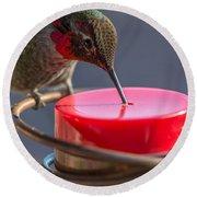 Hummingbird On Feeder Round Beach Towel