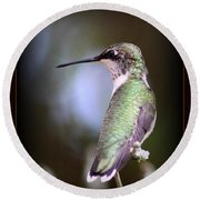 Hummingbird Photo - Side View Round Beach Towel