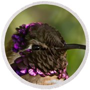 Hummingbird Portrait Round Beach Towel