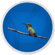 Hummingbird Posing Round Beach Towel