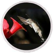 Hummingbird Sigh Round Beach Towel