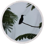 Hummingbird Silhouette Round Beach Towel