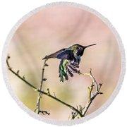 Hummingbird Stretch Round Beach Towel