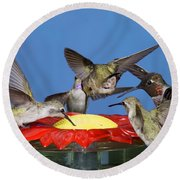 Hummingbirds At Feeder Round Beach Towel