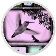 Hummingbirds In Old Frames Collage Round Beach Towel