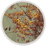 Hummingbirds On Yellow Tree Round Beach Towel
