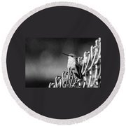 Hummy On Fence B And W Round Beach Towel