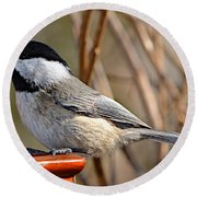 Hungry Chickadee  Round Beach Towel