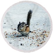 Hungry Chipmunk Round Beach Towel
