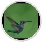 Hungry Little Hummingbird 5 Round Beach Towel