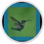 Hungry Little Hummingbird 6 Round Beach Towel