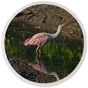 Hungry Pink Spoonbill Round Beach Towel