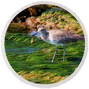 Hungry Willet Round Beach Towel