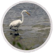 Hunting For Food Round Beach Towel
