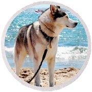 Husky On The Beach Round Beach Towel