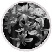 Hyacinth In Black And White Round Beach Towel