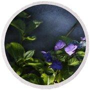 Hydrangea Violet-blue Round Beach Towel