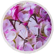 Hydrangea With Bright White Butterfly Round Beach Towel