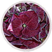 Hydrangeas In Rich Rose Color Round Beach Towel