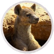Hyena In Den Round Beach Towel