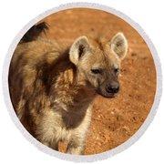 Hyena Round Beach Towel