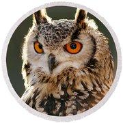 Hypnoteyes  Eurasian Eagle Owl Round Beach Towel