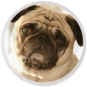 I Can Be Your Lovebug Round Beach Towel