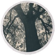 I Can't Describe Round Beach Towel by Laurie Search